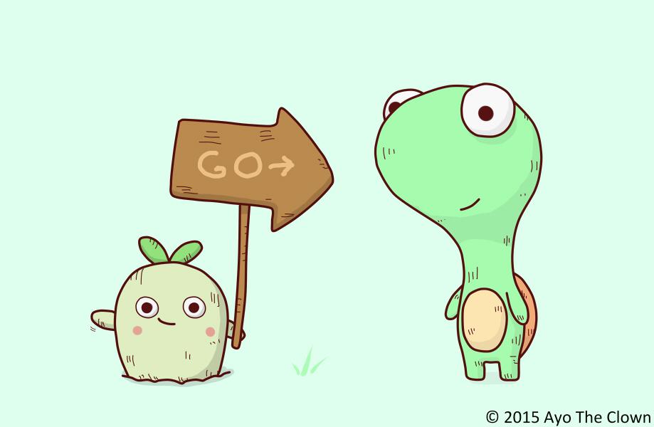 Turtle_Radish
